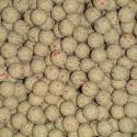 Fruit Fusion Special Boilies 15 mm 5 kilo